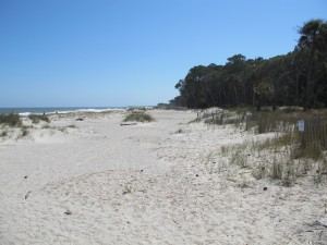 Hunting Island is one of America's best beaches