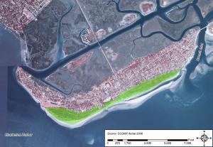Sullivan's Island, SC Management Plan